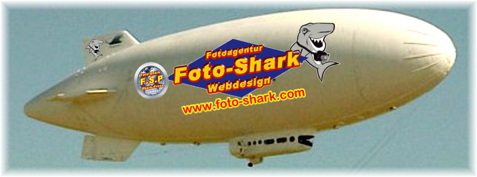 foto shark webdesign shark motors dolphin tv stingray motors gold world24 doc morris itunes app store best western hotels o2 telefonica mexx weltbild verlag xing